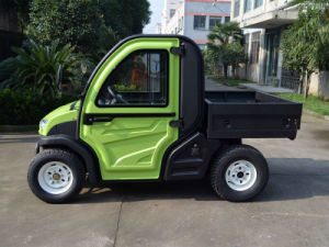 Electric Farm Vehicle 2 Seater Golf Cart 5kw