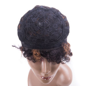Hot Sale Human Hair Lace Wig Short Size Wig pictures & photos