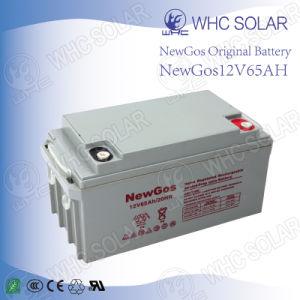 Deep Cycle Solar Battery 12V65ah Lead Acid Battery pictures & photos