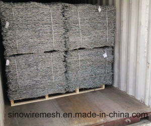Electro Galvanized Hexagonal Wire Mesh Netting with High Quality (CE and SGS) pictures & photos