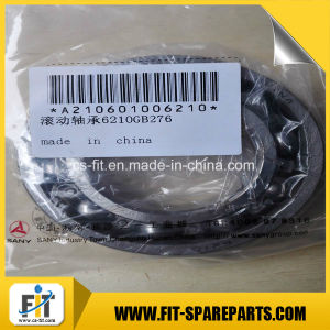 Good Quality Cylindrical Roller Bearing for Sany pictures & photos