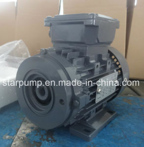 Hydraulic Motors pictures & photos