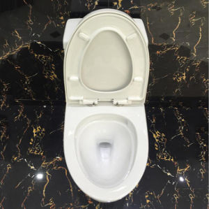 Ovs Ceramic Bathroom Best Design Sanitary Ware Siphonic One/1piece Bothroom Toilet pictures & photos