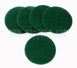 Scouring Pad (P3006) pictures & photos