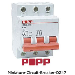 Miniature Circuit Breakers (DZ47)