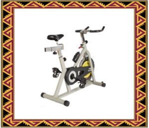 Magnetic Spinning Bike pictures & photos