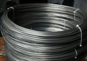 Standard Tantalum Metal Small Wire pictures & photos