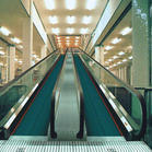 Moving Walkway (BXR) pictures & photos