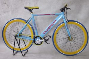 Special 700c Fixed Gear Bike Bicycle pictures & photos