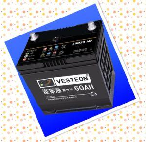 Low Maintenance Car Battery pictures & photos