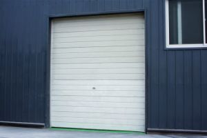 Cheap Sectional Insulated Industrial Door pictures & photos