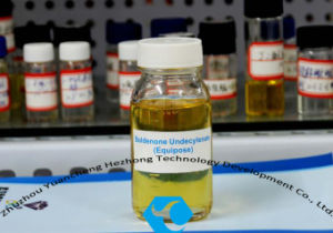 Hot Sale Liquid Boldenone Undecylenate (Equipoise) Raw Materials CAS: 13103-34-9 pictures & photos