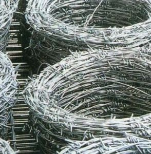 Electro Galvanzied Barbed Wire Net