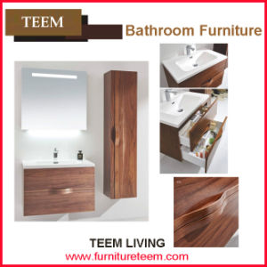 Teem Living 2015 Modern Shower Bathroom Cabinet pictures & photos
