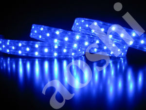 LED Flexible Strip/3528SMD