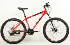 Hot Sale Cheap Mountain Bike (FP-MTB-ST005) pictures & photos