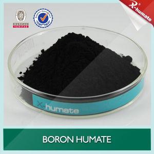 Boron Humic Acid/ Boron Humate Granular pictures & photos