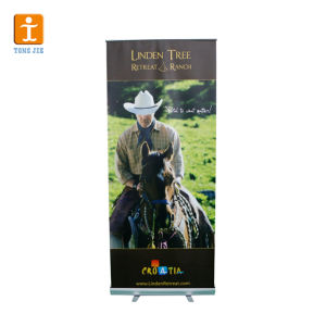 Flex Roll up Banner Roll up Banner Stand Display pictures & photos