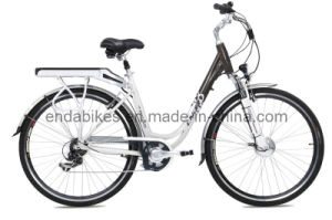 Electric Bicycle/Bike (TDB28S002)