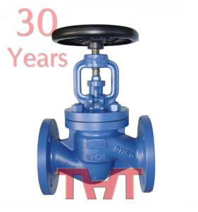DIN Bellows Sealed Globe Valve pictures & photos