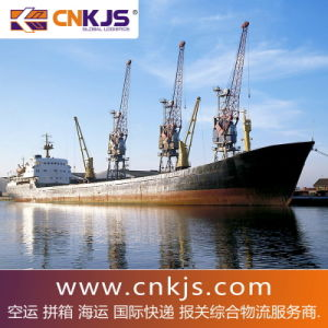 Consol Shipping Discount Rate From China to Aguascalientes