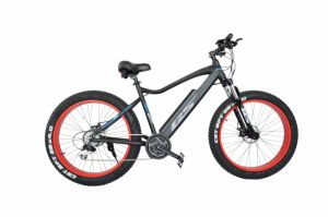 26 Inch Fat Tyre Inner Battery Sand Snow Electric Bike