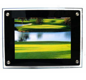 "Digital Photo Frame (DPF(12""))"