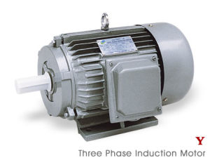 Ie2 (CE) Y Series Three Phase Electric Motor (Y802-4) pictures & photos