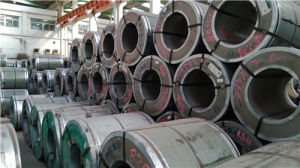 Manufacturer Supply Metal Roofing Coil/ Galvanized Steel Coil