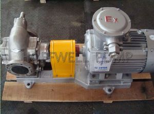 KCB Stainless Steel Gear Pump pictures & photos