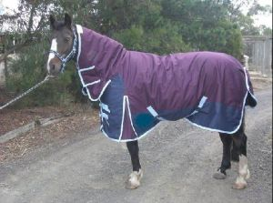 Ripstop Waterproof Winter Turnout Horse Rug (SMR1627) pictures & photos