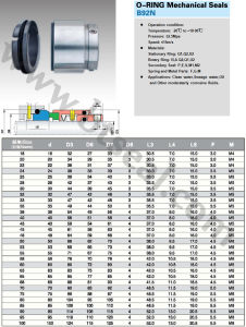 Mechanical Seals (B92N) pictures & photos