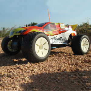 1: 10 Radio Control Nitro RC Truggy Cheetah Hobby Model (251-10) pictures & photos