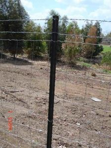 Y Fence Post (Israel Standard) pictures & photos