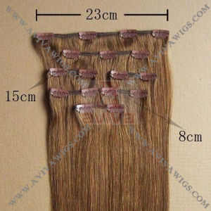 Clip in Human Hair Extension (AV-SH03) pictures & photos