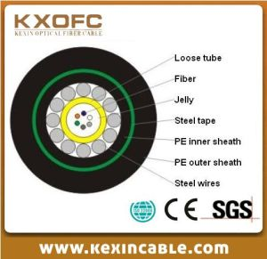 Optic Fiber Cable GYXTY53 for Communication
