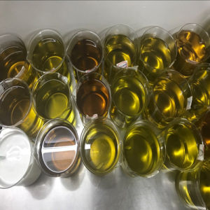Fitness Semi Finished Steroids Oil Equipoise 300 Boldenone Undecylenate 300mg/Ml pictures & photos