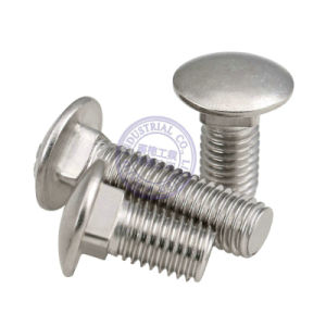DIN603 Stainless Steel Mushroom Head Square Neck Bolts Carriage Bolt pictures & photos