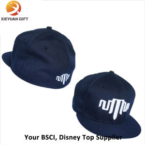 Promotion Cap/Election Cap/Blank Cap/Plain Cap/Embroidery Cap/Printing Cap pictures & photos