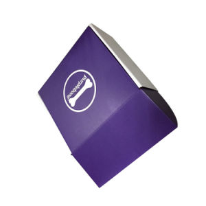 Cardboard Paper Gift Packaging Boxes pictures & photos