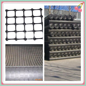 Reinforcement Material HDPE PP Geogrid for Slope Protection pictures & photos