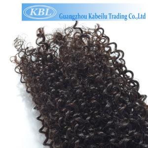 Brazilian Hair Weaving Kinky Curly Human Hair pictures & photos