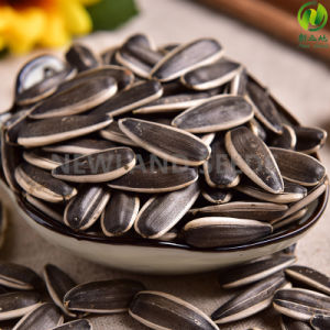 Chinese Sunflower Seeds 363 with Top Quality