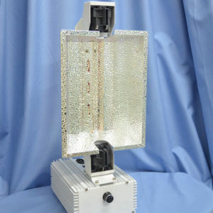 Horticultural Lighting 600W/1000W for Mh/HPS Lamps - New! ! ! ! pictures & photos