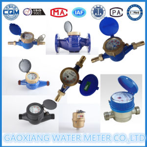 Brass Multi Jet Rotary Vane Water Flow Meter Lxsg15-50 pictures & photos