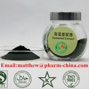 Sell 100% Full Water Soluble Seaweed Natural Plant Extract Fertilizer pictures & photos