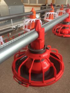 2016 Moden Design Chicken Feeding and Drinking Line pictures & photos