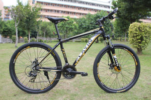 Match Color MTB Mountain Bicycle for Hot Sale pictures & photos