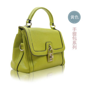 Latest and Unique Designs Summer Collections for Womens Handbags Luxury pictures & photos