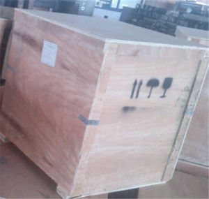 Vacuum Packer for Vacuum Packaging (GRT-DZ600B) pictures & photos